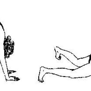Система оздоровлення поля брегга: відновлюємо хребет