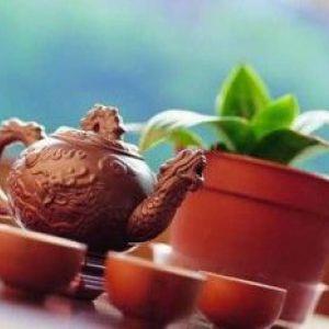 Чай пуер, ефект і відгуки