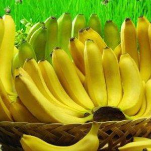 Якщо ви обожнюєте банани прочитайте ці 10 шокуючих фактів!
