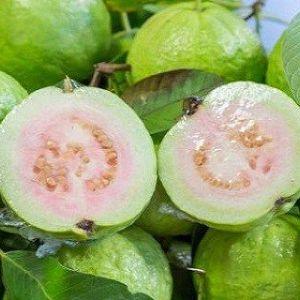 Використовуйте листя гуави, щоб позбутися від зморшок, акне, темних плям і шкірних алергічних реакцій!
