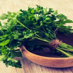 Це цілюща рослина містить в собі компонент, який вбиває навіть 86% ракових клітин в легких!