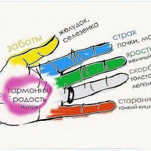 Кожен палець пов`язаний з двома органами. Спробуйте цей швидкий японський метод, приділяючи всього 5 хвилин в день!