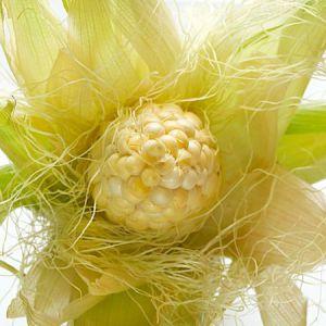 Кукурудзяні рильця для схуднення, застосування і користь