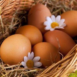 Маска для обличчя з яйця: як правильно робити і наносити?
