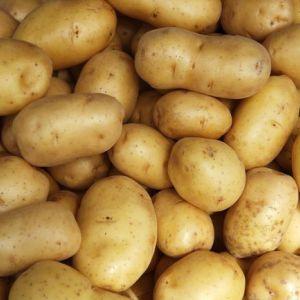 Мінеральні речовини і вітаміни в картоплі