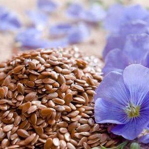 Користь і шкода насіння льону: кому можна і кому не можна вживати продукт