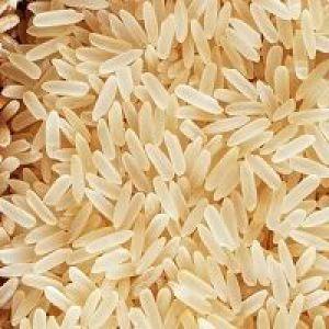 Розвантажувальний день на рисі