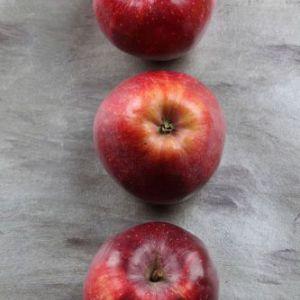 Знову про яблука