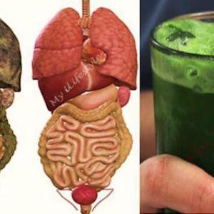 Супер напій для детоксикації організму, який виведе всі токсини і видалить жир з вашого організму!