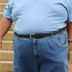 Вчені виявили бактерії ожиріння
