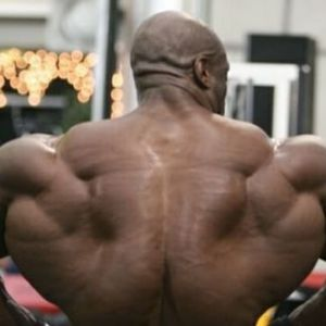 Вправи для м`язів спини в тренажерному залі