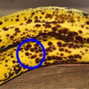 Ось, що відбувається з вашим тілом, якщо ви їсте 2 банана на день протягом місяця