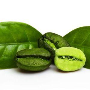 Вся правда про зеленому кави. Чи можна на ньому схуднути?