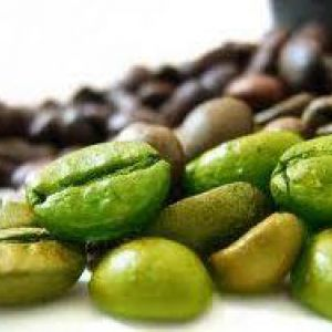 Зелена кава - жиросжигатель нового покоління?